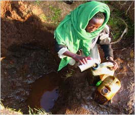 More than half the diseases worldwide are caused by dirty water like the one above.