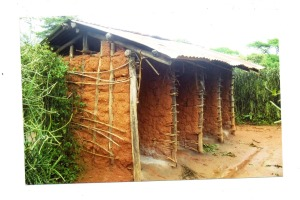 This four stance latrine belongs to a public school in Kashari Mbarara. Instead of toilet papers, pupils use leaves
