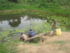 People including a child collect water for domestic use in a rural part of Uganda