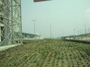 Due to lack of water, constructors of the Qatar Convention Center where the COP18/CMP8 is taking place, used drip irrigation method to deliver water to the flowers around the magnificent center. By Fredrick Mugira