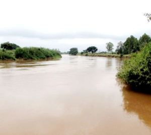 River Nzoia, seen above is not only an all year round source of water in the region but also a source of trouble