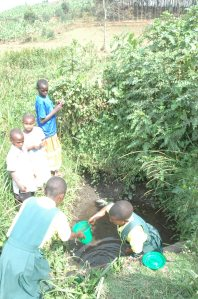 Pupils of Bushozi primary school in Buhweju district struggle to fetch water from a drying shallow well.