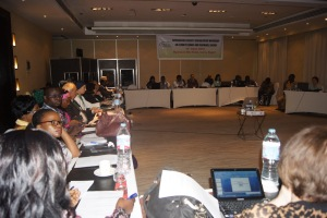 Participants at the CSO workshop on climate change and renewable energy