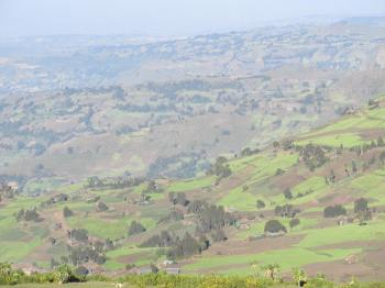 Many Ethiopians rely on rainfall to grow crops, feed their animals, and maintain their livelihoods.