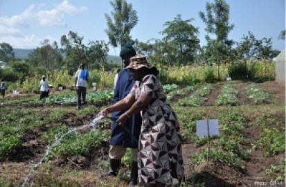 Several farmers in Africa lack access to credit and technology