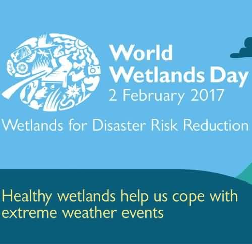 wetlands-day